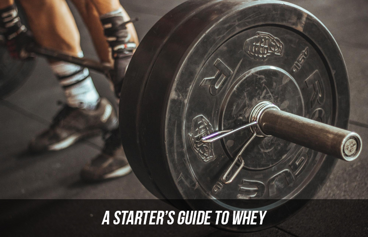 A Starter's Guide To Whey